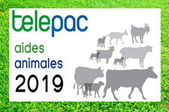 affiche aides animales PAC 2019